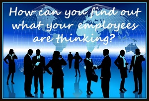 10 questions to ask your employees today thumbnail