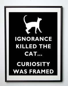 Curiosity Did Not Kill The Cat!