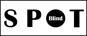 Blind Spots thumbnail